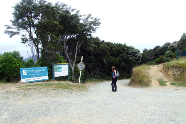 Queen Charlotte Track - Point 14 - Start of our walk on day 2 - Copyright Freewalks.nz