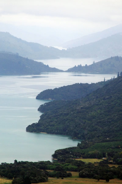 Queen Charlotte Track - Point 15 - Big views of the sounds - Copyright Freewalks.nz