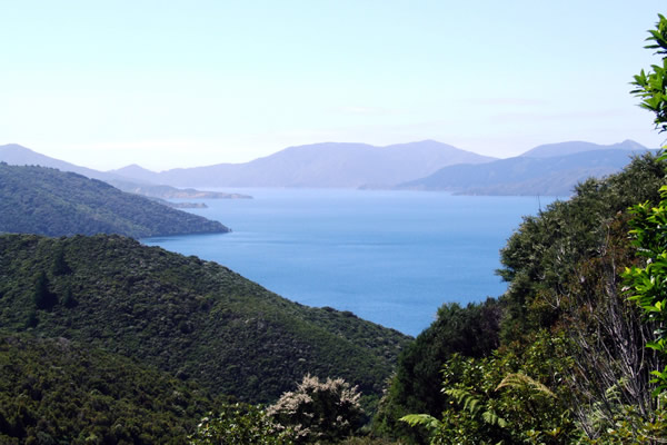Point 2 - View from the top looking out over Queen Charlotte Sound