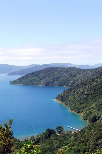 Point 3 - Lovely views out to the sounds - Copyright Freewalks.nz