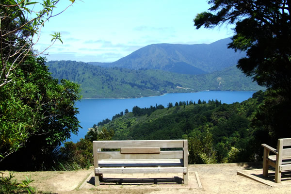 Point 3 - Great seat to view the sounds - Copyright Freewalks.nz