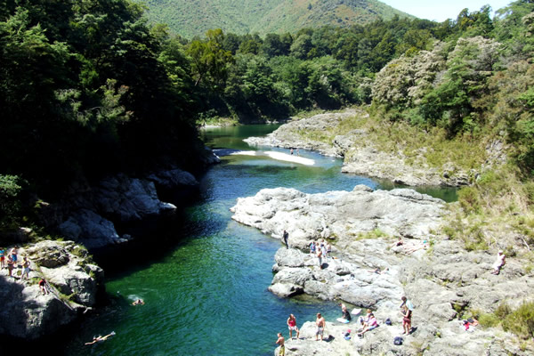 Photo of Pelorus Bridge Walk - Point 1