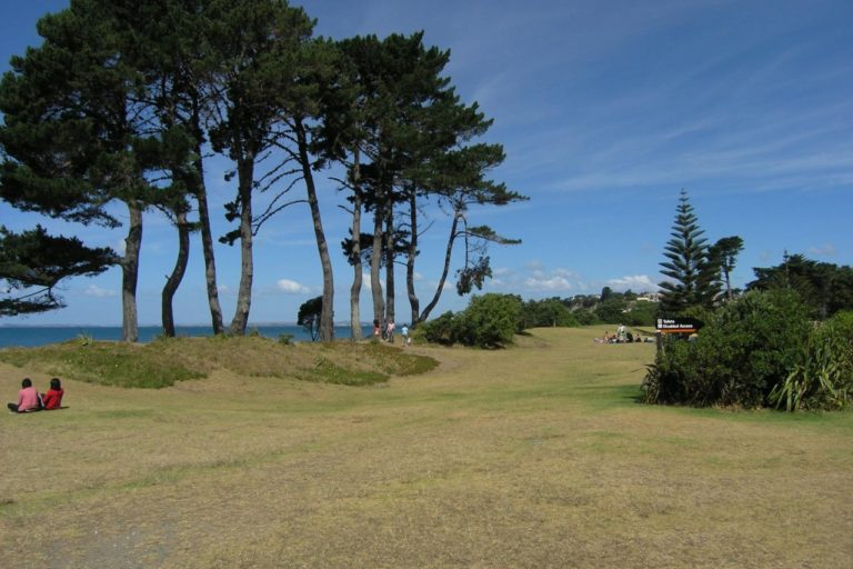 At the end of the Long Bay Regional Park Coastal Track in Auckland