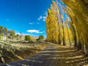 Five minutes into the ride up to Fraser Dam near Clyde in Central Otago