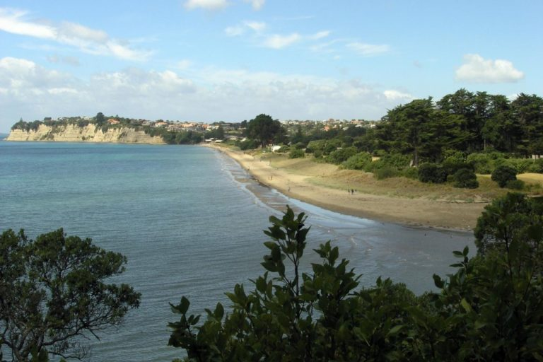 Looking over the Okura River at the end of the Long Bay Regional Park Coastal Track in Auckland