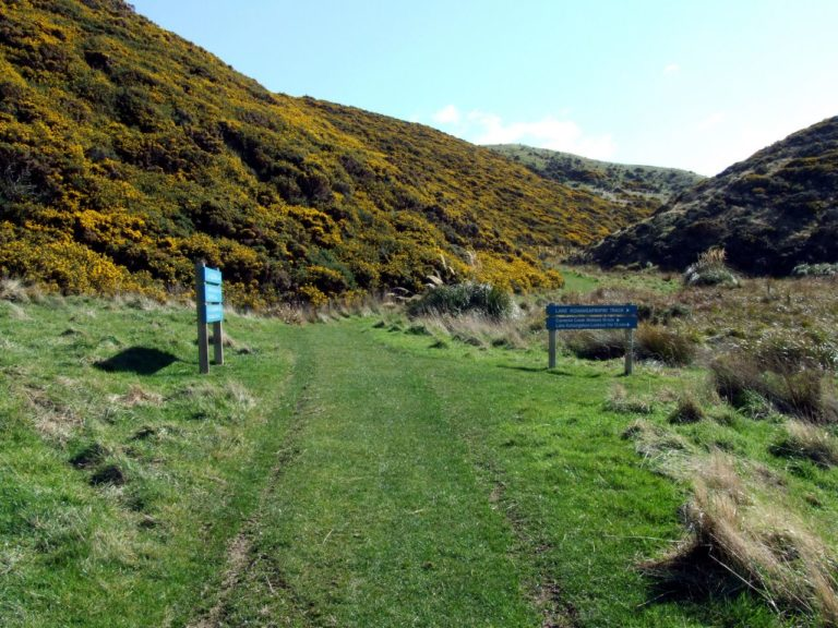 The Track up to the light House