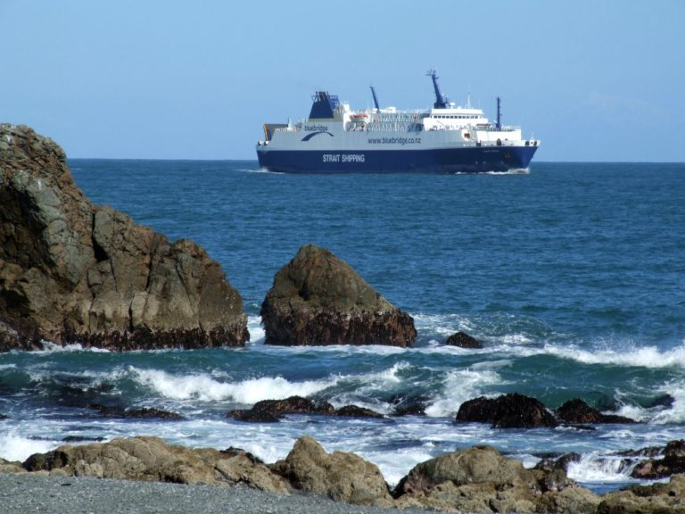 View of the Picton Ferry passing by Pencarrow Heads Light House