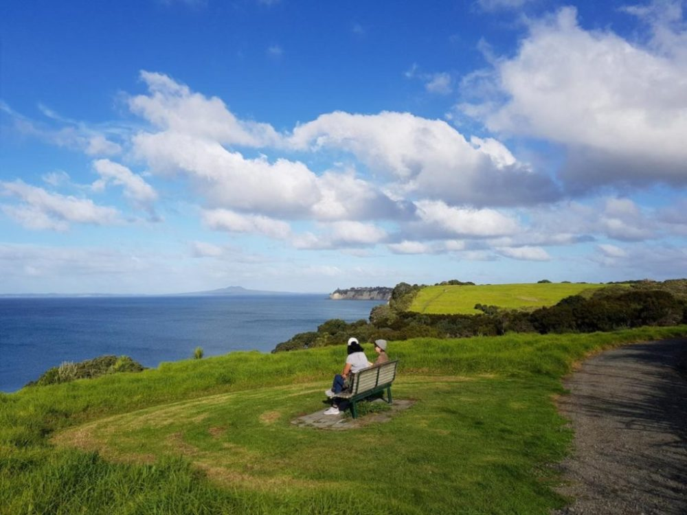 Stop at the seat for lovely views on the Long Bay Regional Park coastal walk in Auckland - Copyright Freewaks.nz