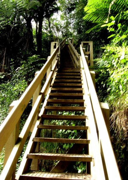 New staircase to the top of Wairere Falls