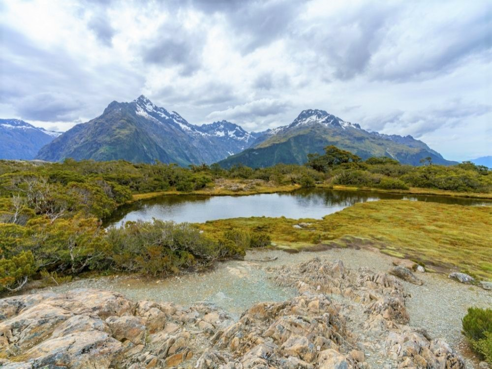 Free Key Summit Track in Milford Sound - South Island - New Zealand - View of a lake on Key Summit Track