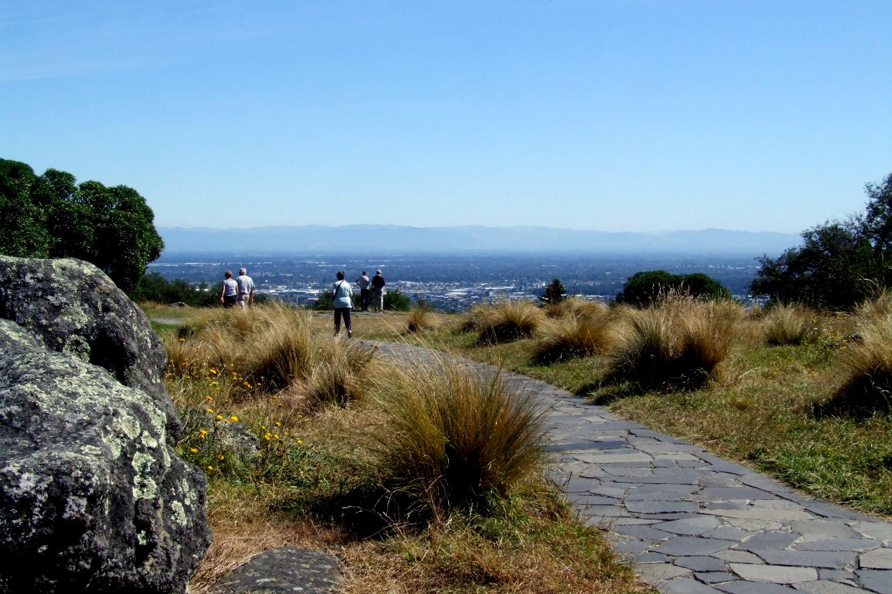 Walking to the lookout||||Sign of the Takahe