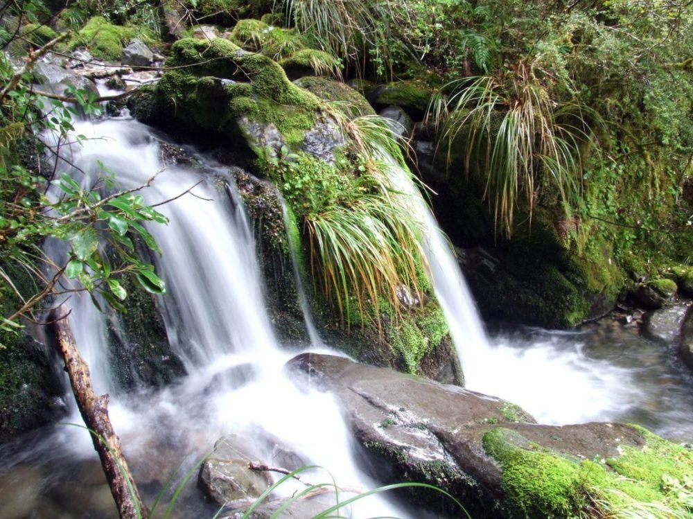 Kaikoura Walks, South Island, New Zealand, Copyright Freewalks NZ
