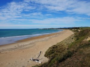 Free Timaru Walking & Hiking Guide - Canterbury Region - New Zealand